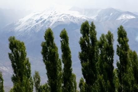Entornos do Cementerio de Uspallata, Mendoza, Argentina, 24/01/2011 — em Uspallata, Mendoza, Argentina.